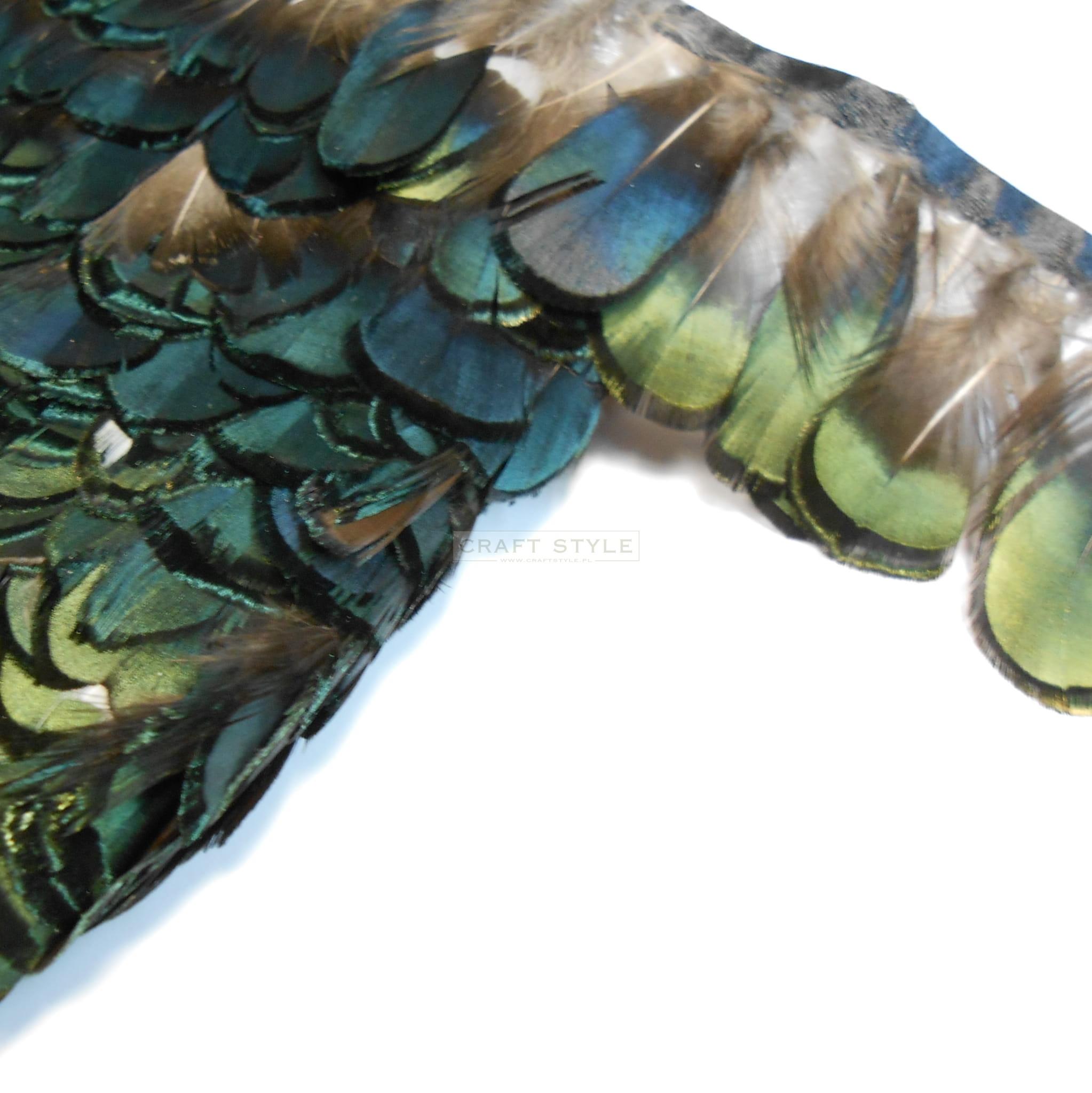 8b4e3411dc Pióra na taśmie - bażant zielonkawe - 50 cm w Craft Style